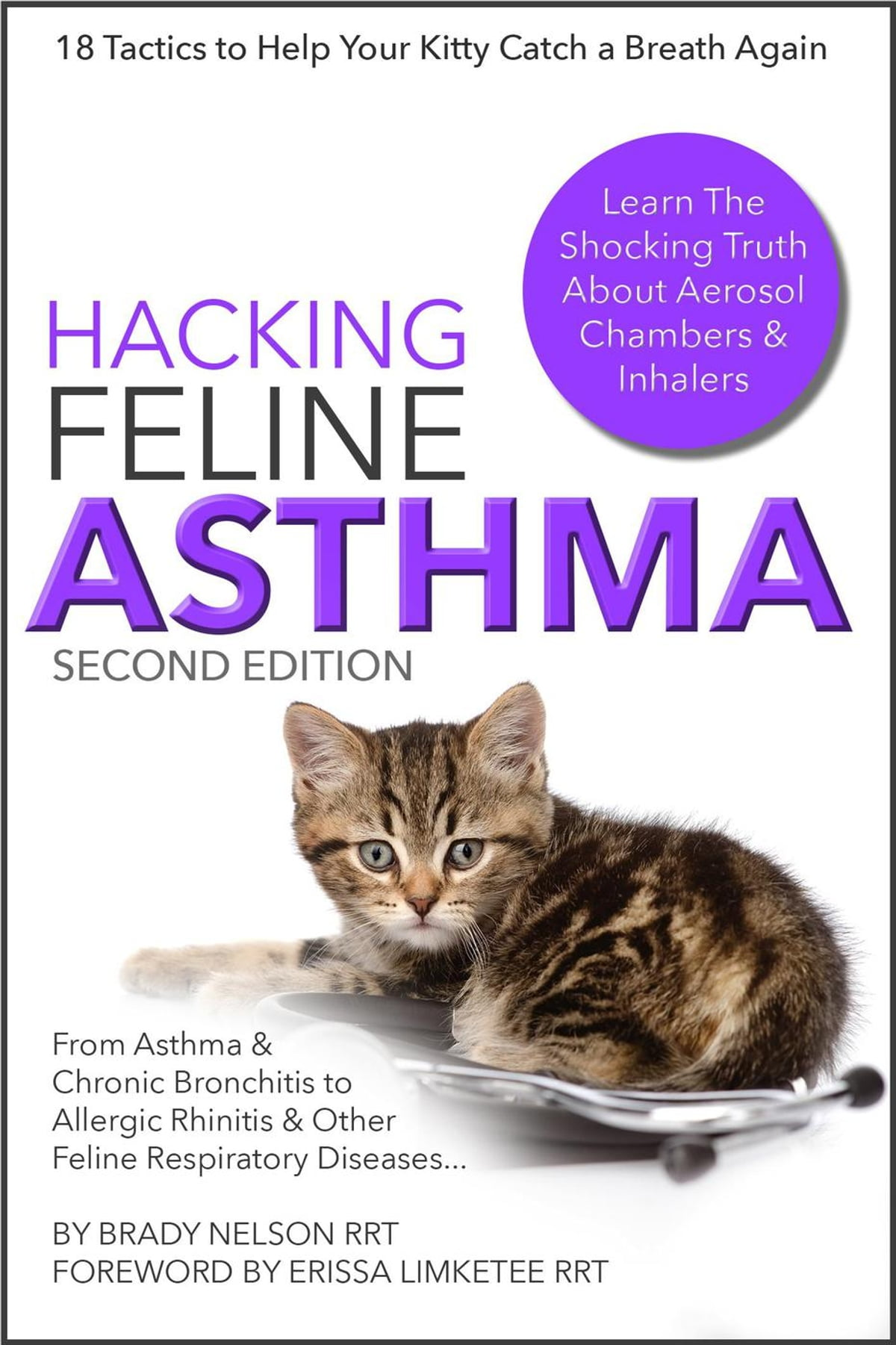 Hypoglycemia In Cats A Quick Guide Canna Pet