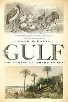 The Gulf: The Making of An American Sea ebook by Jack E. Davis