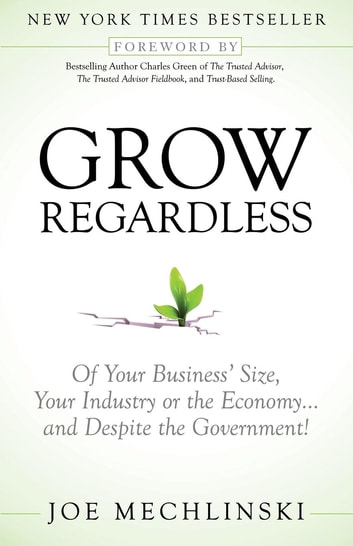 Grow Regardless - Of Your Business's Size, Your Industry or the Economy and Despite the Government! ebook by Mechlinski