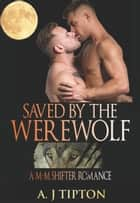 Saved by the Werewolf: A M-M Shifter Romance - Werewolves of Singer Valley, #4 ebook by AJ Tipton