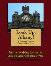 Look Up, Albany! A Walking Tour of Albany, New York ebook by Doug Gelbert