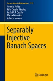 Separably Injective Banach Spaces ebook by Antonio Avilés, Yolanda  Moreno, Manuel González,...