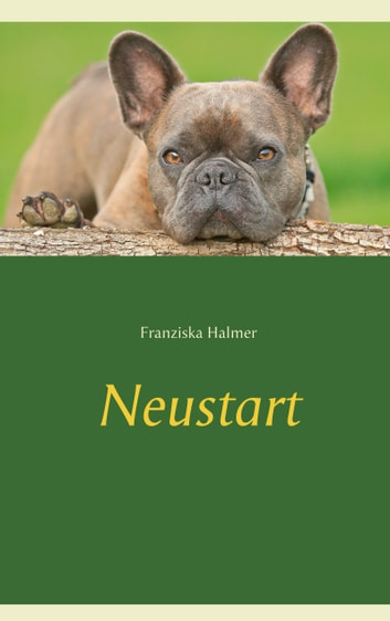 Neustart eBook by Franziska Halmer