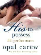 His to Possess #3: Perfect Storm eBook by Opal Carew