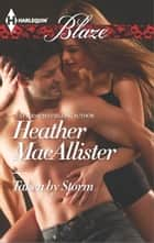 Taken by Storm ebook by Heather MacAllister