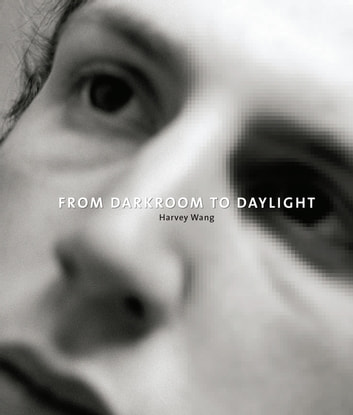 From Darkroom to Daylight - Interviews with Photographers ebook by Harvey Wang