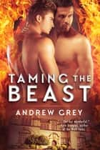 Taming the Beast ebook by Andrew Grey