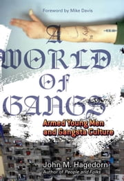 A World of Gangs - Armed Young Men and Gangsta Culture ebook by John M. M. Hagedorn,Mike Davis