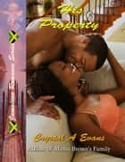 His Property ebook by Crystal Evans