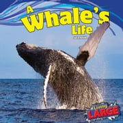 A Whale's Life ebook by Antill, Sara