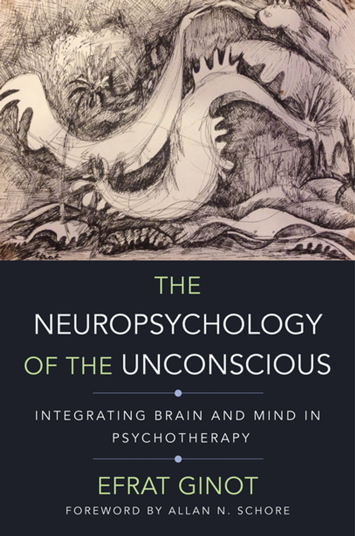 The Neuropsychology of the Unconscious: Integrating Brain and Mind in  Psychotherapy (Norton Series on Interpersonal Neurobiology) eBook by Efrat  Ginot ...