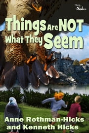 Things Are Not What They Seem ebook by Anne Rothman-Hicks,Kenneth Hicks
