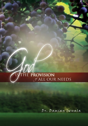 God is the Provision of All Our Needs ebook by Dr. Damian Iwuala