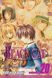 Black Cat, Vol. 20 - A Carefree Tomorrow ebook by Kentaro Yabuki,Kentaro Yabuki