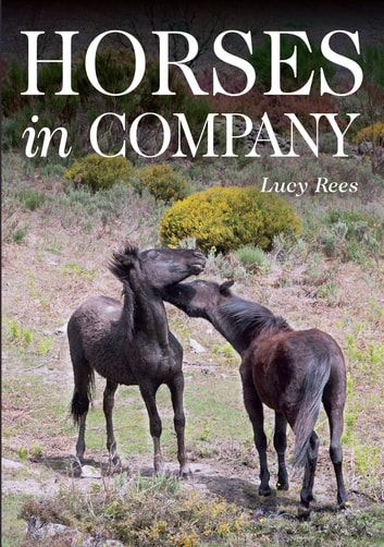 Horses in Company ebook by Lucy Rees