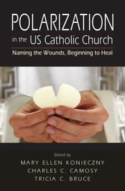 Polarization in the US Catholic Church - Naming the Wounds, Beginning to Heal ebook by