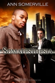 Somatesthesia ebook by Ann Somerville