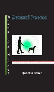 What's The Hurry? ebook by Quentin Baker