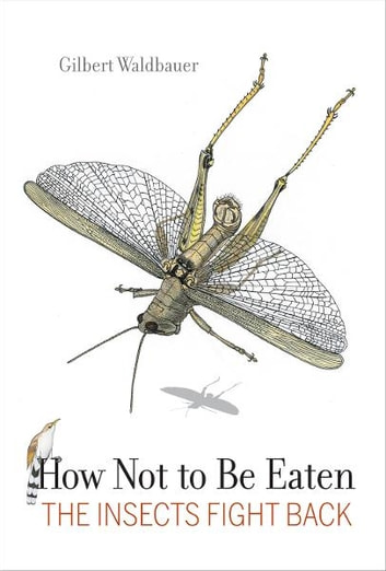 How Not to Be Eaten - The Insects Fight Back ebook by Dr. Gilbert Waldbauer