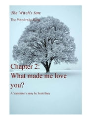 What Made Me Love You? ebook by Scott Bury