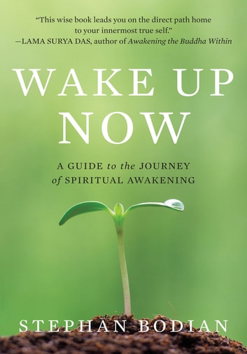 Wake Up Now ebook by Stephan Bodian