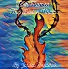 Twin Flames: The Divine Union ebook by Jordan Frederick