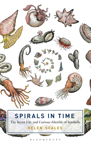 Spirals in Time - The Secret Life and Curious Afterlife of Seashells ebook by Helen Scales