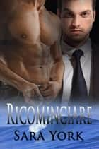 Ricominciare ebook by Sara York