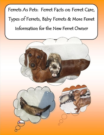 Ferrets As Pets: Ferret Facts on Ferret Care, Types of Ferrets, Baby Ferrets & More Ferret Information for the New Ferret Owner ebook by Barbara Greenwood, Malibu Publishing