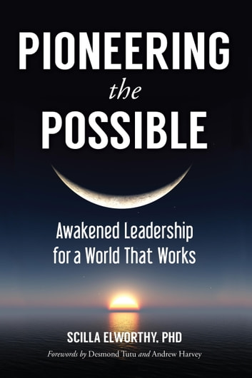Pioneering the Possible - Awakened Leadership for a World That Works ebook by Scilla Elworthy