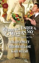 Weddings Under a Western Sky: The Hand-Me-Down Bride\The Bride Wore Britches\Something Borrowed, Something True - The Hand-Me-Down Bride\The Bride Wore Britches\Something Borrowed, Something True ebook by Elizabeth Lane, Kate Welsh, Lisa Plumley