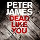 Dead Like You audiobook by Peter James