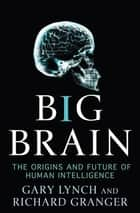 Big Brain - The Origins and Future of Human Intelligence ebook by Gary Lynch, Richard Granger