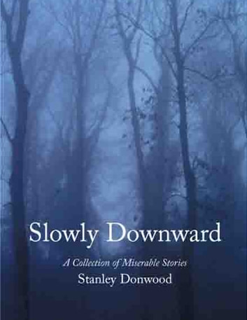 Slowly Downward eBook by Stanley Donwood