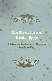 The Structure of Bird's Eggs - A Scientific Look at What Happens Inside an Egg ebook by Anon.
