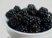 A Crash Course on How to Grow Blackberries ebook by Linda Cooper