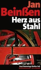 Herz aus Stahl - Paul Flemmings fünfter Fall - Frankenkrimi ebook by Jan Beinßen