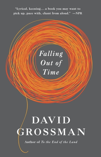 Falling Out of Time ebook by David Grossman