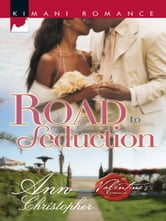 Road to Seduction ebook by Ann Christopher