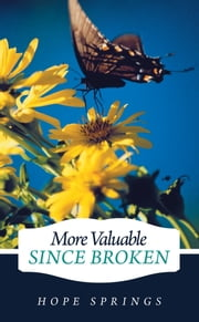 More Valuable Since Broken ebook by Hope Springs