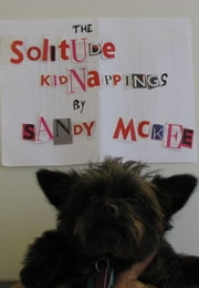 The Solitude Kidnappings ebook by Saundra McKee