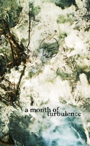 A Month Of Turbulence ebook by Pez Pourbozorgi