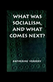 What Was Socialism, and What Comes Next? ebook by Verdery, Katherine