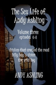 The Sex Life of Andy Ashling Volume Three - Episodes 6-8 ebook by Dennis Fleming / Andy Ashling