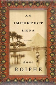 An Imperfect Lens - A Novel ebook by Anne Roiphe