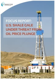 FOCUS REPORT: U.S. Shale Gale under Threat from Oil Price Plunge ebook by Shale Gas International