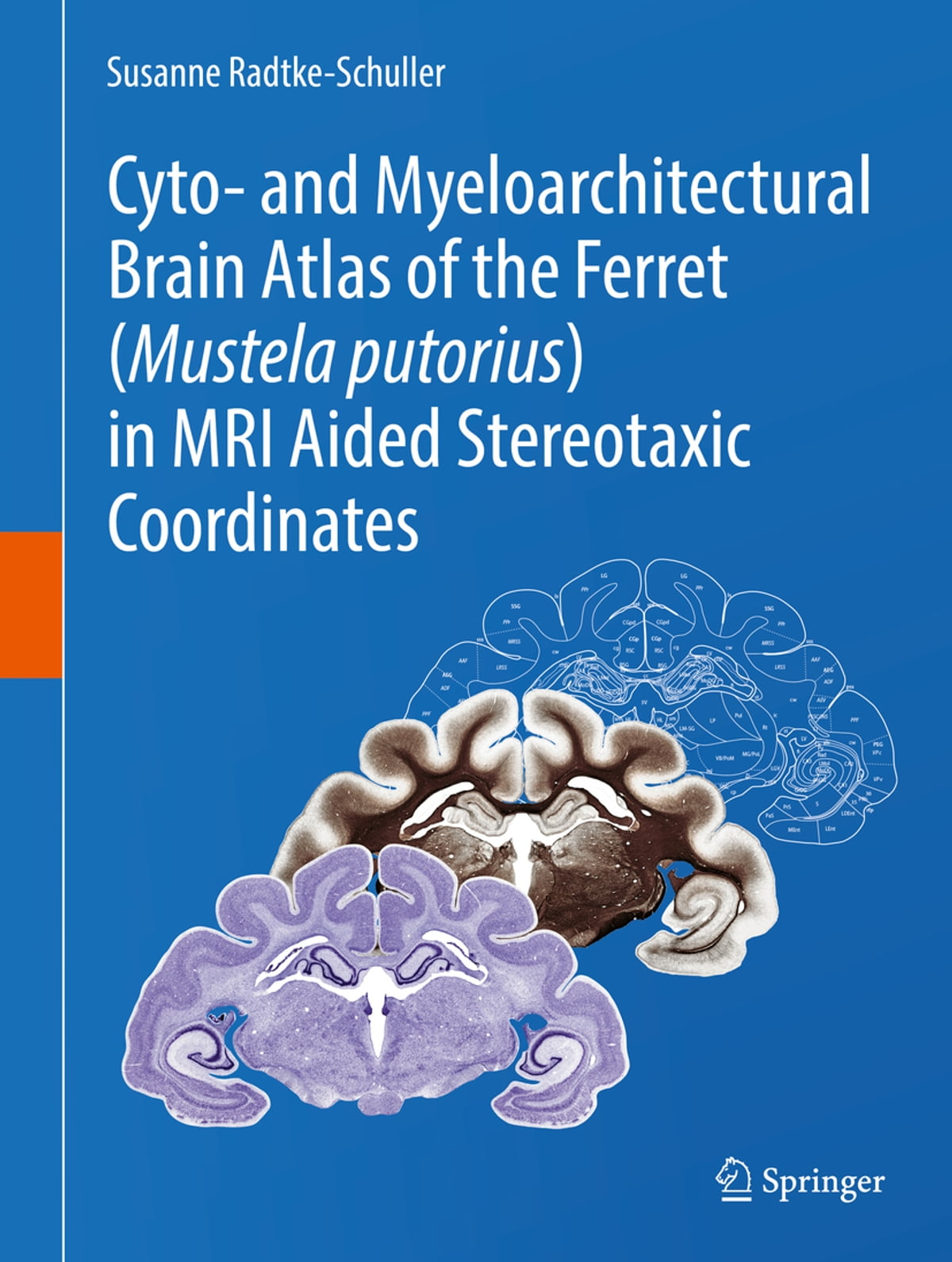 Cyto And Myeloarchitectural Brain Atlas Of The Ferret Mustela