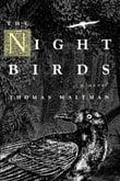 Night Birds