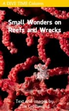 Small Wonders on Reefs and Wrecks ebook by Tim Grollimund