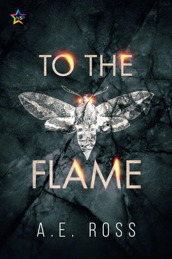 To the Flame ebook by A.E. Ross